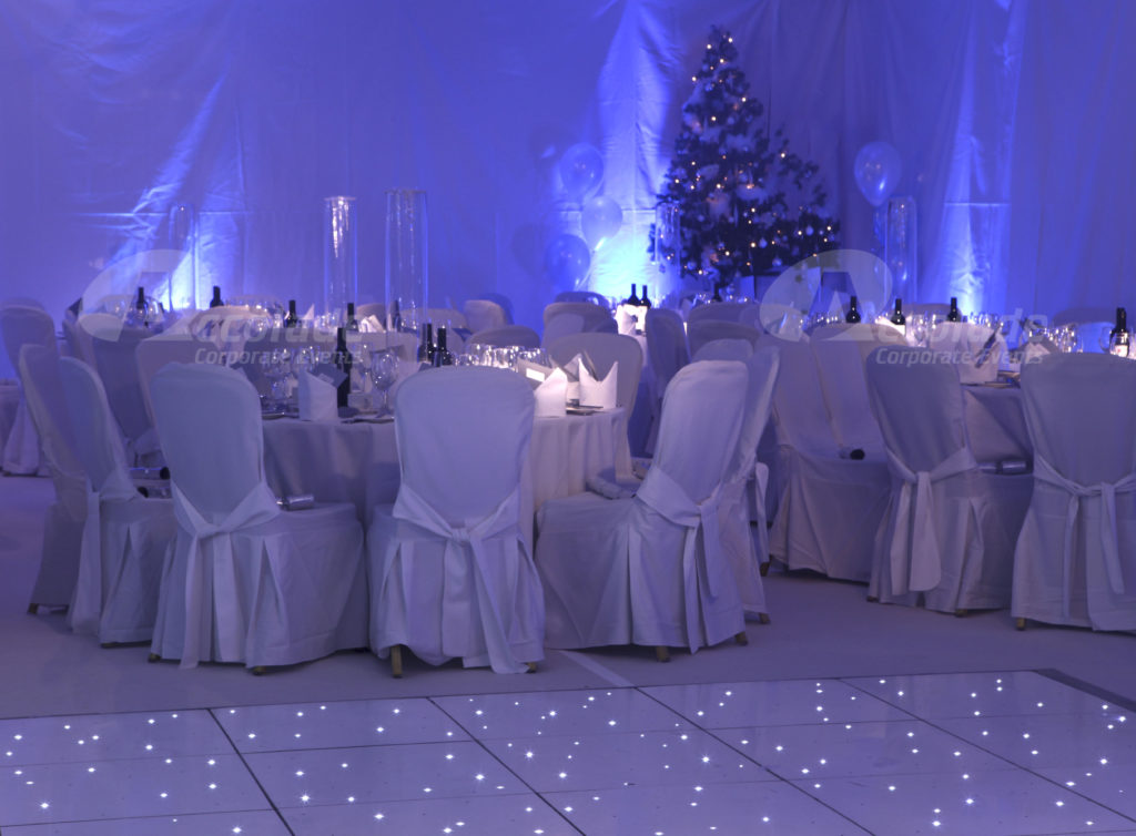 Winter Wonderland Party