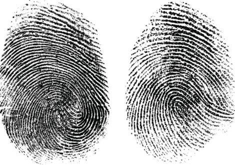 Fingerprint Masterclass team building event