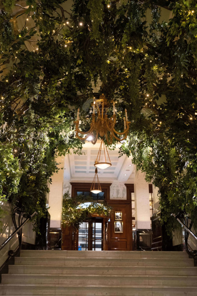 entrance to the savoy london